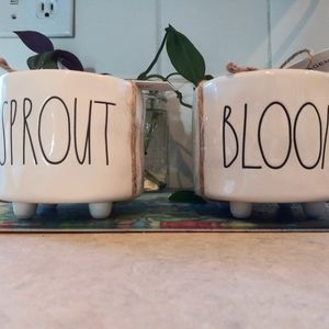 Rae Dunn sprout and bloom small pots